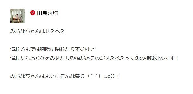 tashima_meru-20151202-hori_miona.jpg
